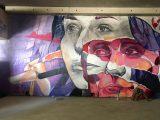 Oeuvre d'Ensemble réel -Spot 13 - le Spot de Street Art Parisien en vogue