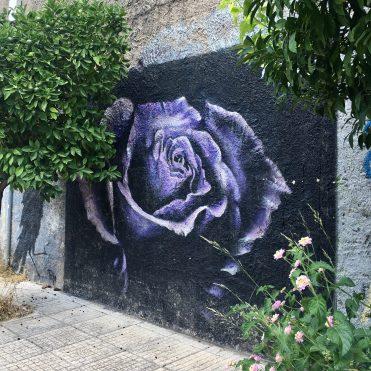 Rose violette Street Art Athènes
