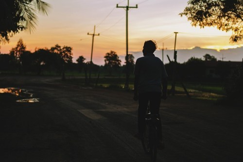 Why leash laws matter - bicycle accident - Altizer Law