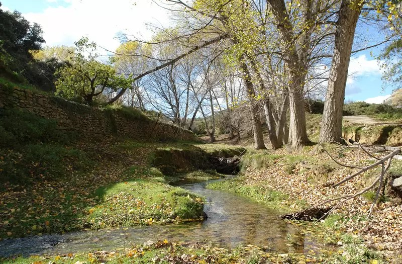 Municipal Natural Site of Rio Molinell, Castellón