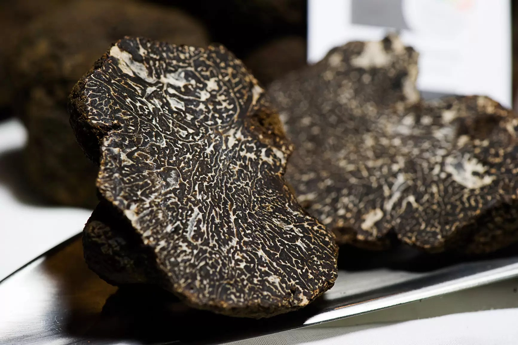 Exhibition of the Black Truffle of the Maestrat