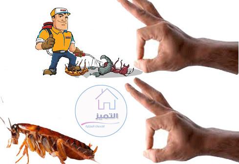 ارخص شركة مكافحة حشرات في الدمام