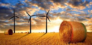 rural wind farm