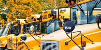 School buses education in autumn