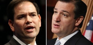 Marco Rubio and Ted Cruz