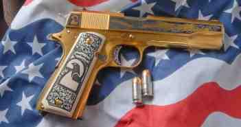 Second Amendment gun