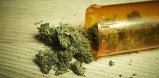 marijuana pot