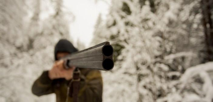 gun-hunting-shooting