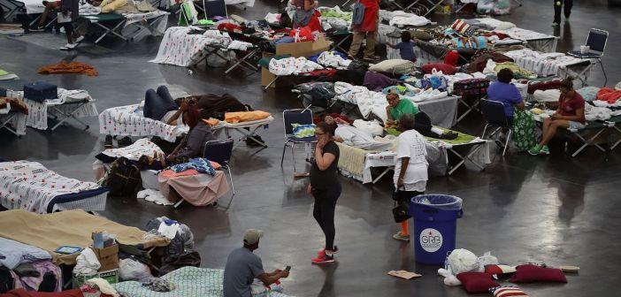 Harvey victims