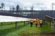 Layfayette solar