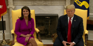 Nikki Haley_Trump