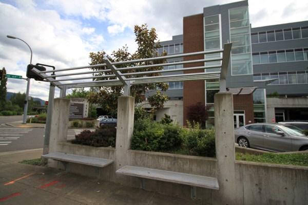 issaquah medical building - landscape