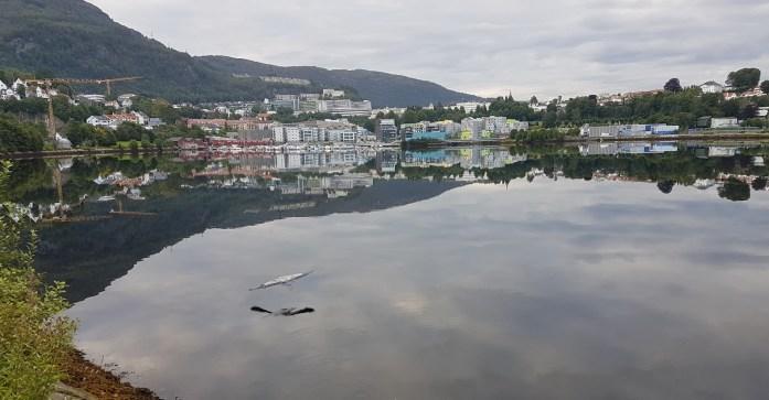 Hegre Store Lungegårdsvann Bergen