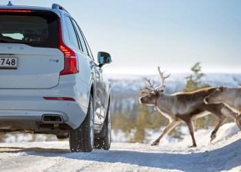 Vinterdæk er rigtigt rare at have, når Rudolf kommer forbi