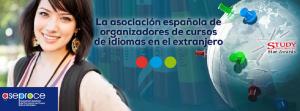 info@aseproce.org