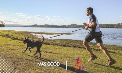 Los consejos de Mas Good para practicar Canicross.
