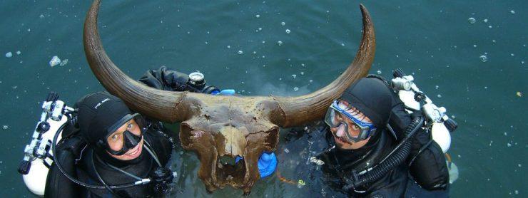 Paläontologie Unterwasser