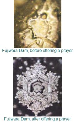 emoto_before-after
