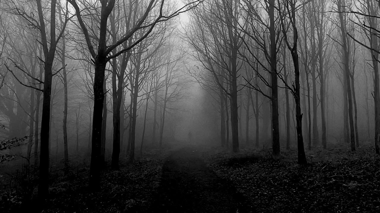 Trentemøller: Foggy Figures