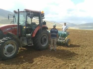 Lorsun da arpa buğday ekim i