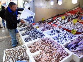 Avrupa Konseyi Karadeniz için balık avlama kotasını belirledi
