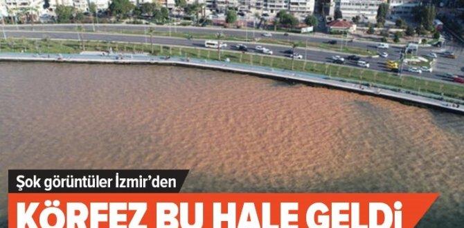 Su borusu patlayınca İzmir Körfezi bu hale geldi .