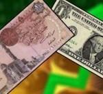 ارتفاع نسبة الاستثمار الأجنبي المباشر في مصر