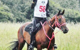 الفارس البتال: فخور بإحرازي بطولة سلوفاكيا الدولية للقدرة والتحمل