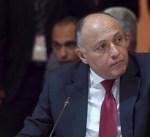 شكري: مفاوضات آستانة تهدف لتهدئة الصراع العسكري السوري