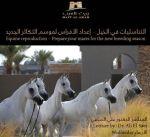 مركز الجواد العربي يطلق البرنامج الثقافي السنوي لموسم 2017 /2018 غدا