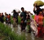 بنغلاديش: نقل لاجئين روهينجا إلى جزيرة مهددة بالفيضانات