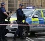 لندن: اعتقال رجل بعد إيقاف سيارة مريبة قرب قصر بكنغهام الملكي