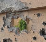 التحالف: استشهاد مدنيين اثنين بمقذوف حوثي استهدف جازان