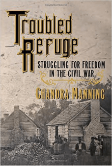 Cover of Troubled Refuge