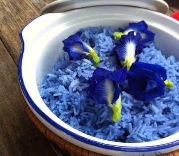 clitoria ternatea rice