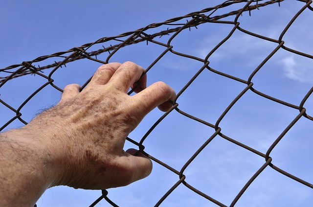 barbed-wire-1408454_640