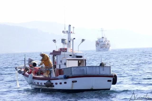 barcos ria de vigo