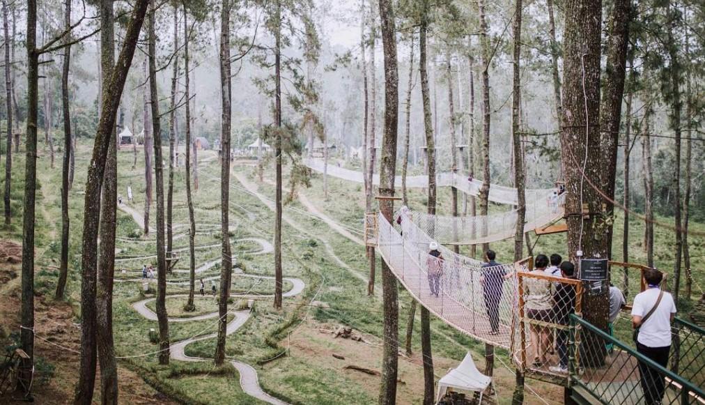 Objek Wisata Orchid Forest Cikole Lembang Bandung Yang