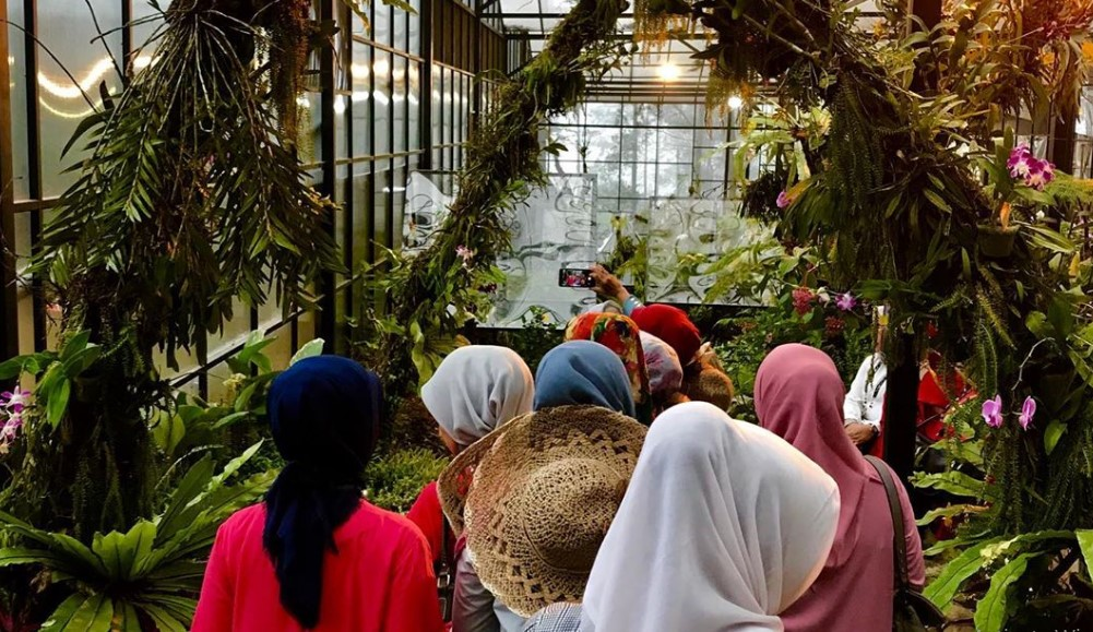Orchid Klinik atau Green House Orchid Forest