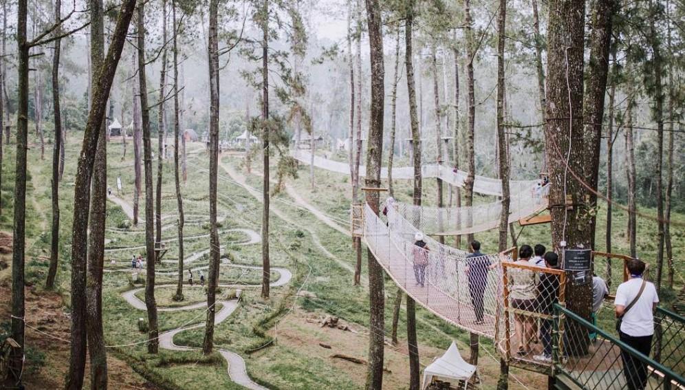 Rute Jalan Menuju Orchid Forest Cikole Lembang Bandung