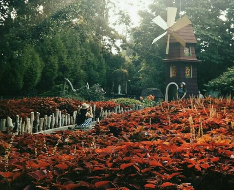 Taman Bersantai di Farmhouse Lembang