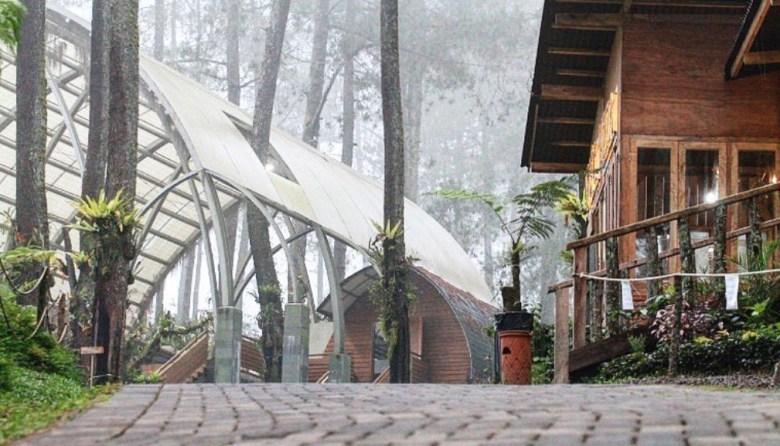 Tea House Corner Orchid Forest Lembang