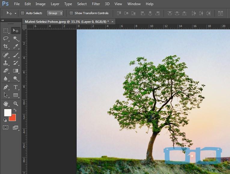 Buka Materi Seleksi Pohon