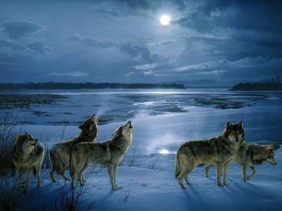 rios-lobos