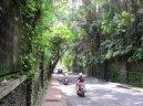 Ciclomotores en Ubud, camino hacia el Bosque de Monos, en medio de la ciudad