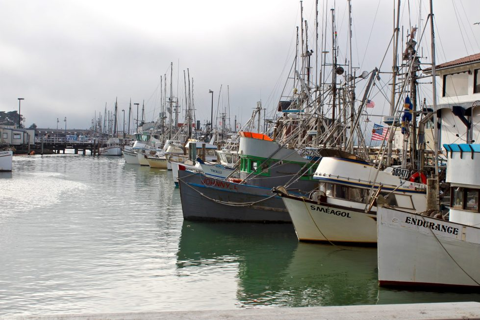 Boats docked at the pier at Fisherman's Wharf on the San Francisco Bay.