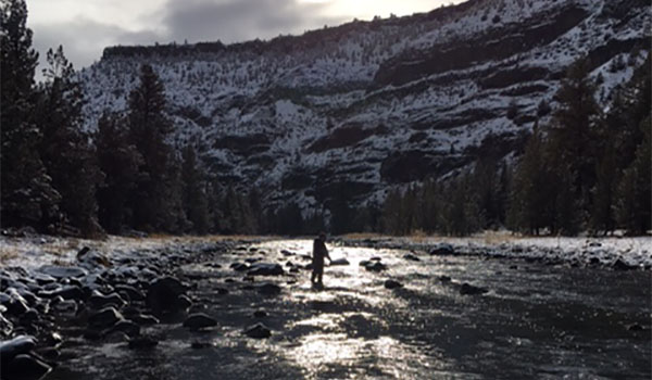 Our 7 Best Winter Fly Fishing Hints