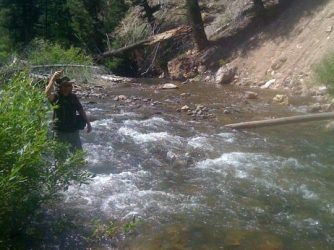 A fly fisherman standing in an Idaho stream with a cutthroat trout on.