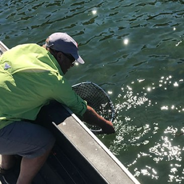 Catch More…Some Things To Think About When Fly Fishing In The Late Summer