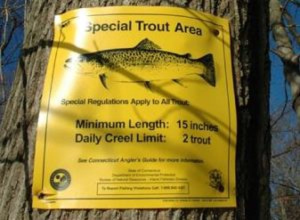 The sign on the saugatuck river about sea run Brown trout